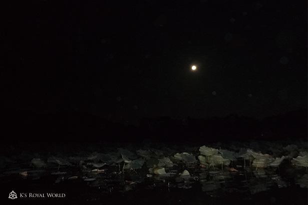 大覚寺船から眺める満月