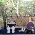 高台寺「秋の夜の観月茶会」臥龍池(がりょうち)の鏡の様な水面に息をのむ。少人数で贅沢に夜の高台寺を散策